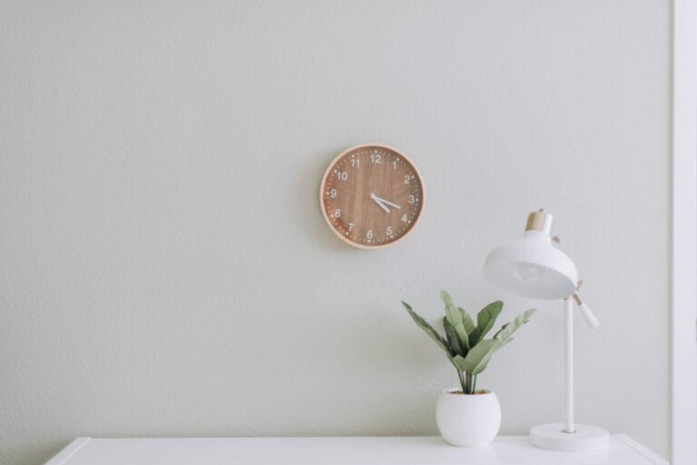clock plant lamp